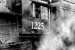 Pere Marquette 1225 (suszkoglen) Tags: pere marquette 1225 ashley mi polar express sri