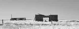 Will's Barn