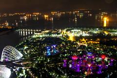 Singapore Park (dltaylorjr) Tags: worldtrekker singapore garden by bay marinabaysand mbs vacation