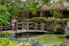 DSC_3311-1 (santi.gual) Tags: green pond shark sharks feeding garden bridge resort beach couple love engaged wedding lovers nikon d5000 yongnuo 35mm f2