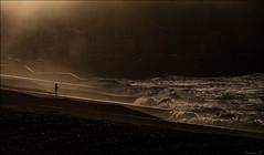 Face aux Éléments... (Nanouch@) Tags: mer sea brume fog playa plage mist mar crepuscule coucherdesoleil sunset brouillard outdoor paysage paisaje landscape rivage borddemer vagues lumière light luminosité littoral ombre silhouette solitude crepúsculo cielo sky orange vent luz niebla ondas normandie picardie normandy france francia letréport atmosphère soledad lonely