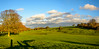 Westwood (stevefge) Tags: 2017 autumn beverley uk trees bomen shadows sky cloud wolken hills panorama yorkshire reflectyourworld herfst