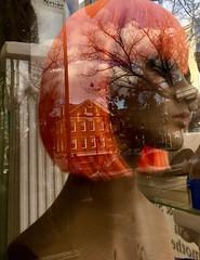 Dendrite (Midoritori2013) Tags: neuron thinking thoughts brain dendrite wig head mannequin street glass reflection trees hair orange girl