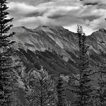 The Side of Mount Rundle Beyond the Trees...(Black & White, Banff National Park) thumbnail