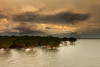 East Arm mangroves (Louise Denton) Tags: eastarm mangroves darwin harbour creek inlet weather atmosphere water sunset sea ocean nt wetseason lightning bolt cg lightningtrigger cloud dark stormy wet moody