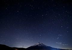 ふたご座流星群 画像11