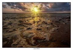 L'écume (Laurent Asselin) Tags: plage vagues écume eau mer océan soleil leverdesoleil sunrise ciel nuages couleurs paysage rivage guyane kourou