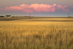 cumulus red (Christian Collins) Tags: canoneos5dmarkiv ef24105mmf4lisusm cumulus cloud rojo nube i70 stratton colorado co wheat straw east sunset atardecer farm farmland range plains september 2017 fall