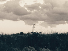 Monochrome lighthouse (Andrés Bentancourt) Tags: landscape blackandwhite view outdoors tourism faro lapaloma rocha relax uruguay vacations weekend lighthouse monochrome