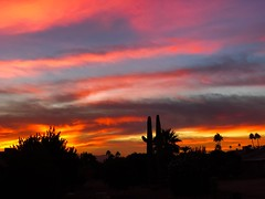 November in Arizona (oybay©) Tags: suncitywest colorful color tonight arizona sunset monsoon weather clouds summer fall silhouette colros sky cloud outdoor sunshower sun shower city west landscape backyard nikon cactus hardtosee amazing