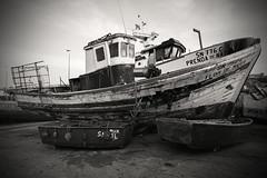 Needing some TLC.. (Dafydd Penguin) Tags: wreck fishing boat vessel craft ship abandoned hrbour harbourside harbor port dock fish traditional tlc waterside sea blackandwhite blackwhite black white monochrome mono noir bw sines portugal atlantic coast europe nikon d610 nikkor 20mm af f28d