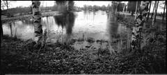Lakelet (Foide) Tags: pinhole realitysosubtle 6x12 rolleiretro 80s bw nolens