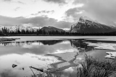 Vermillion Lakes in B&W (deirdre.lyttle) Tags: alberta banff banffnationalpark canada mountains vermillion lakes reflection rockies winter mount rundle