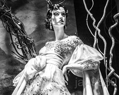 "2017 Holiday Window Display ""Once Upon A Holiday"" at Saks Fifth Avenue, New York City (jag9889) Tags: 2017 2017holidaywindowdisplay 20171203 bw blackandwhite christmas departmentstore display dress fashion flagship gowns holiday manhattan mannequin midtown monochrome ny nyc newyork newyorkcity night nightphotography nightscene outdoor rockefellercenter saks saksfifthavenue storewindow usa unitedstates unitedstatesofamerica window woman jag9889"