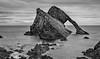 Bow Fiddle Rock (jasty78) Tags: bowfiddlerock portknockie morayfirth moray birds scotland nikond7200 sigma350mmf14 bw mono blackwhite blackandwhite