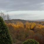 Dans la chaude lumière d'un soir de décembre, Bosdarros, Béarn, Pyrénées Atlantiques, Aquitaine, France. thumbnail