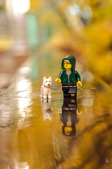 Autumnal walk (Ballou34) Tags: 2017 7dmark2 7dmarkii 7d2 7dii afol ballou34 canon canon7dmarkii canon7dii eos eos7dmarkii eos7d2 eos7dii flickr lego legographer legography minifigures photography stuckinplastic toy toyphotography toys stuck in plastic autumnal autumn walk dog hood rain leaves orange green reflection courbevoie îledefrance france fr