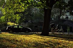 November in NYC (Xenograft) Tags: nyc new york city autumn manhattan pentax k3ii sigma 1750mm