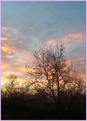 Abendhimmel 01 (Dorothea Paul) Tags: abendhimmel