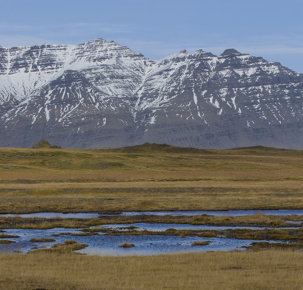 """tundra research paper 1this article is part of a special issue entitled """"arctic permafrost  future research  on the effects of climate change on tundra wildlife in a context."""