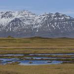 Icelandic Tundra thumbnail