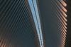 New York Oculus (FOXTROT|ROMEO) Tags: ny nyc newyork oculus bahnhof trainstation wtc manhattan one