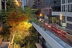 New York 2016 - The High Line