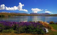 Lake Alexandrina in summer (Maureen Pierre) Tags: lakealexandrina landscape blue sky lake