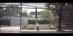 street no.1 (Pornthep Pongpiboonphol) Tags: light shadow art contrast moviestill filmstill canon film still behindthescene snapshot candid dramatic streetphoto streetphotography street scene movie cinematic portrait lonely alone road tree