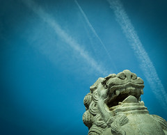 _DSC0660-1Stone Statues of Guardian lion-dog and blue sky background (ValogaImage) Tags: stone background blue sky guardian statues japan kanagawa take photography shrine tone sea evening kamakuras march tsurugaoka views purification cherry dancing cinematic stair fuji liondog part nishiguchi sign clock love mountain walking yoshino 2014 important park monumental daibutsu maiden town amida near traffic tower train kamakura most statue people sakura mount enoshima name body abstract great fountain entry hand station outdoor katase light stage hase hachimangu bronze buddha