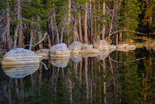 Upside Down, Tenaya Lake_