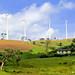 Windmills - Ambewela, Sri Lanka (Hafiz Issadeen) Tags: