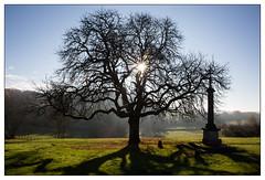 Morning sun, Clomot (Wilco1954) Tags: burgundy scenery tree cross clomot sunburst bourgogne village cotedor france