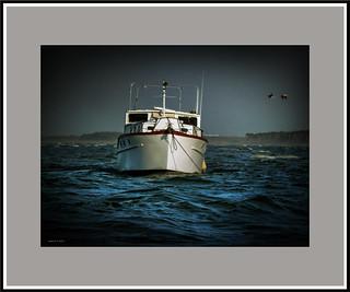 Riding at anchor.
