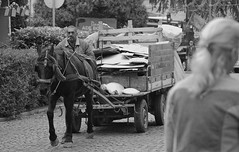 Gipsy hide (salaminijo) Tags: road people social socialphotography horses gipsyman outdoor streetphoto bw blackandwhite bianconero crnobelafotografija monochrome schwarzweiss vehicle traffic belgrade belgrado semlin everyday moment gipsy balkan europe evropa