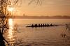 Sunrise Over Madison (pauliefred) Tags: madison wisconsin unitedstates sunrise lake mendota lakemendota capitol wi goldenhour tree uwmadison uw row