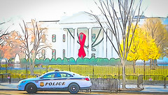 2017.12.01 Red Ribbon at the White House, World AIDS Day, Washington, DC USA 1128