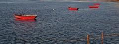 the red boats - barcos vermelhos (Caminha, Portugal) (AnaValle) Tags: baía vermelho azul oceano mar rio foz céu água barcos barco entardecer sol caminha minho