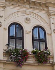 Sopron9 (Dreamaxjoe) Tags: sopron city corso building