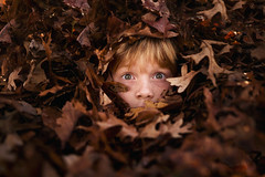 Hiding (Elizabeth Sallee Bauer) Tags: active autumn backlight backyard beautyinnature child childhood coolweather crisp fall fun girl happiness kid leaves outdoors outside playing raking september trees winterize youth