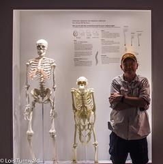Evolution (11Jewels) Tags: canon 1855 houstonnaturalsciencemuseum paleontologywing downtown houstontx museumdistrict bones