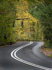 Skelwith Road