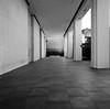 San Francisco (bior) Tags: hasselblad500cm sanfrancisco trix kodaktrix distagon 120 mediumformat 6x6cm street financialdistrict towers courtyard plaza