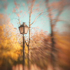 Autumn in Madrid (Ro Cafe) Tags: autumn park grounds streetlight blur bokeh selectivefocus lensbaby sweet50 nikond600