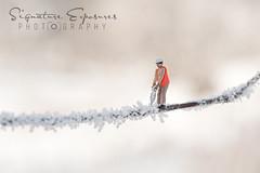 171202140126-5291 (shannbil (Signature Exposures)) Tags: signatureexposures shannonbileski shannbil littlepeople tiny hoscale train people frost hoarfrost frozen