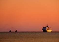 Welcoming Committee (ajecaldwell11) Tags: noordam xe3 sunrise ankh water port fujifilm light ship newzealand napier sky tide dawn caldwell hawkesbay orange