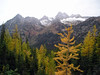 Missing view: yellow larches (edenseekr) Tags: washingtonpass northcascadeswa larch conifers mountians