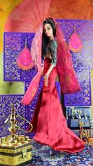 Tales of the Arabian Nights - Scheherazade (Dolldiva67) Tags: veroniqueperrin talesofthearabiannights integritytoys fashionroyalty veroniquebreathless veroniqueperrinbreathless scheherazade arabiandancer middleeasternbeauty cosplaydolls turkishbeauty