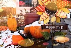 November 7, 2017 - Happy fall! (Jennifer McNeil)