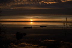 Sunrise Pool (@bill_11) Tags: pegwellbay unitedkingdom isleofthanet naturereserve england kent